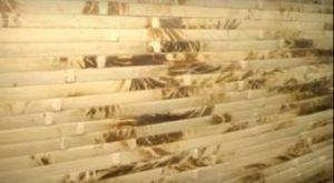 отделка бамбуковыми панелями, фото