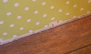 Вздулся ламинат – как исправить, причины вздутия, ремонт