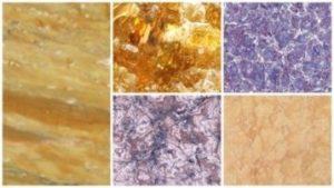 распространенные сорта мрамора