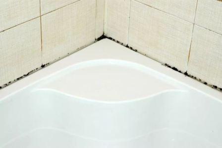 Как избавиться от плесени в ванной комнате
