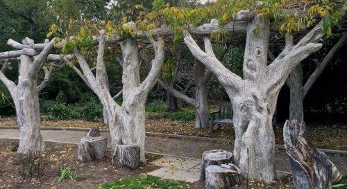 Арт-бетон дерево для садовой террасы